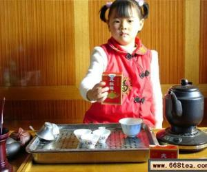 教你如何品饮武夷岩茶