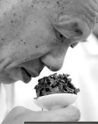 秋茶上市铁观音最吃香 价格与去年持平
