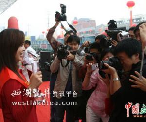 庐山云雾茶获江西绿茶博览会金奖(图)