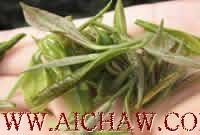 紫笋茶基本特征