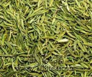 雀舌茶叶的品质特点,