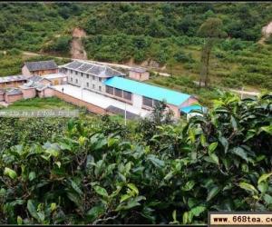 茶家寨的茶厂与制茶