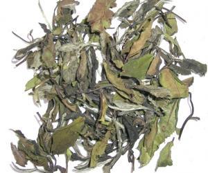白牡丹茶叶能使肌肤恢复活力及光彩