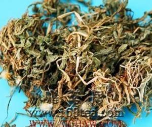 金银花蒲公英粳米粥功效和做法