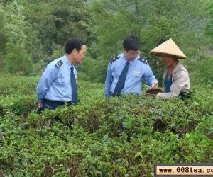 凌云工商注重茶叶商标培育工作