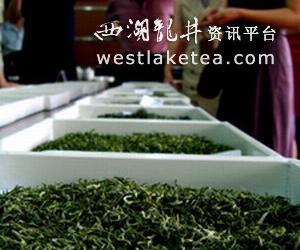 49种茶叶角逐贵州十大名茶(图)