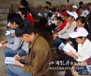 南涧县基层茶叶合作组织加强无公害茶叶生产技术培训