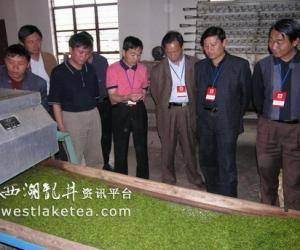 云南双柏县茶叶产业增产、增效明显(图)