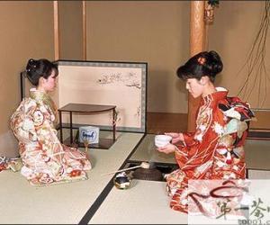 在煎茶中细味日式茶道