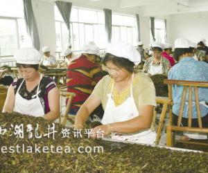 武夷山茶企组织剩余劳动力再就业(图)