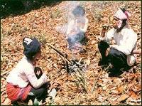 布朗族的青竹茶