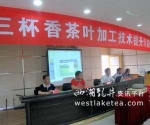 浙江:泰顺县农业局举办茶叶加工技术提升培训班(图)
