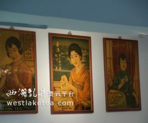 台湾茶叶概况(图)