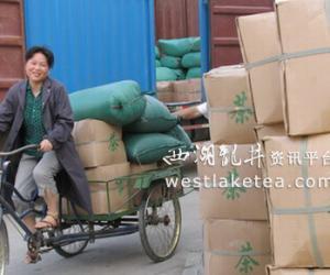 安徽芜湖:峨桥茶叶市场淡季不淡(图)