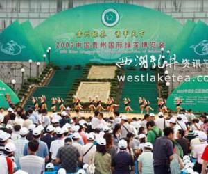 贵州国际茶博会 凤冈很很鲁在线视频竞风流(图)