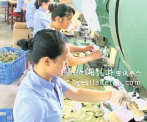安徽芜湖:茶家女家门口就业(图)