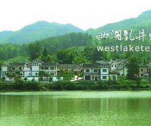 贵州湄潭:茶叶改变山乡面貌