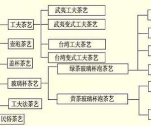 茶艺的分类|茶文化的知识