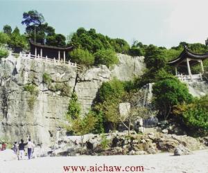 碧螺春原产地-苏州太湖之滨的洞庭山