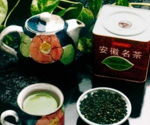 涌溪火青茶的历史渊源