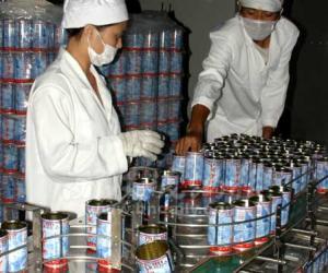 """首款普洱茶饮品――""""冰普洱""""上市"""