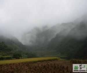天目青顶茶的产区环境