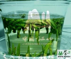 江山绿牡丹茶的品质特点