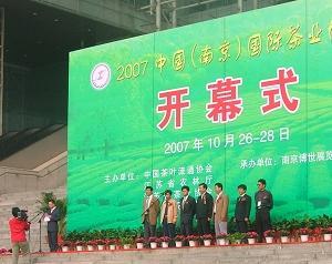 祝愿南京茶博会越办越好-----中国白茶网