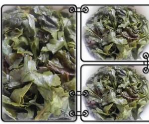 安溪乌龙茶(干茶,茶底,茶汤,叶片展示)