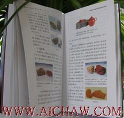 紫砂百科全书:《紫砂壶鉴赏宝典》