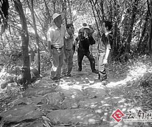 茶马古道:变迁与保护