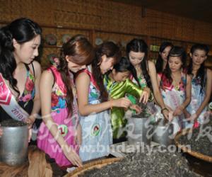 珠江小姐御园茶厂学做普洱茶
