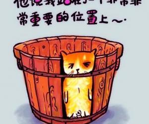 """喝不同茶叶能避免""""木桶效应"""""""