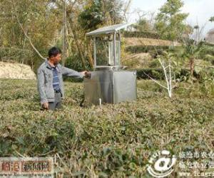 凤庆县在茶园安装太阳能杀虫灯
