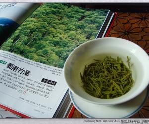 初级茶艺师教程--茶树起源