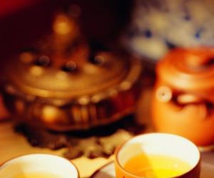 初级茶艺师教程-- 茶类篇(茶叶的种类与名茶介绍)