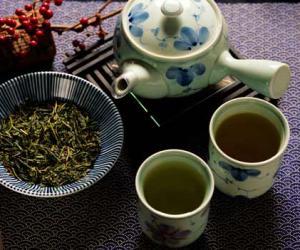 茶经白话解释:三 之造(茶叶采制)