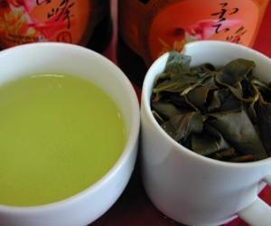 乌龙茶可以降低高血脂的科学依据