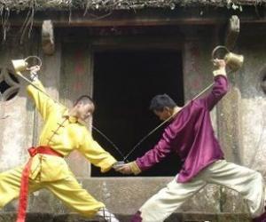 """蒙顶山茶的茶技""""龙行十八式""""亮相茶博会"""
