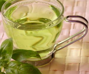 泰国绿茶市场需求量走高