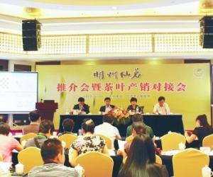 宁波茶文化节:齐聚宁波共谋茶业发展