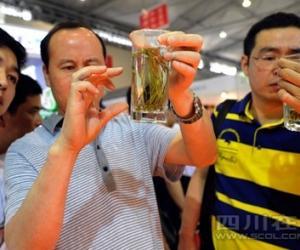 2012成都国际茶博会隆重开幕