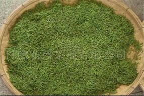 绿茶保存注意事项