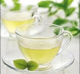 春季茶疗养生