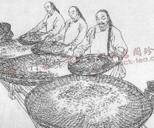 汪家龄创作祁门红茶传统手工制茶连环画册
