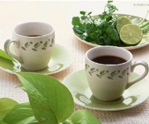厦门人的饮茶习俗和饮茶方法