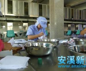 安溪铁观音传统纸包茶热销东南亚并十分受宠