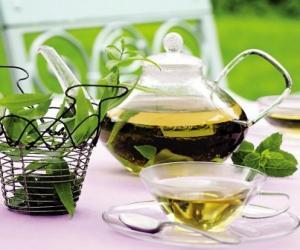 女白领应多喝绿茶补水防辐射