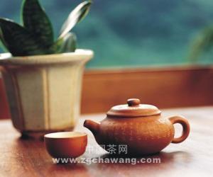 云南凤庆香竹箐古茶树初论