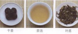 名茶品鉴:雷公山银球茶